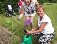 Pacienti s roztroušenou sklerózou mají vlastní záhon – v Květné zahradě v Kroměříži