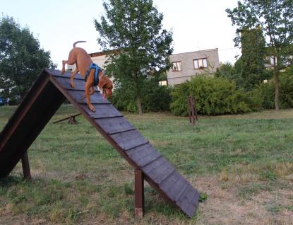Pejskaři ve Valašském Meziříčí dostali nové hřiště pro cvičení agility