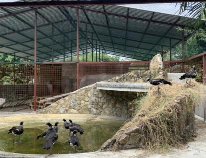 Zlínská zoo pomáhá budovat záchranné centrum v Ekvádoru