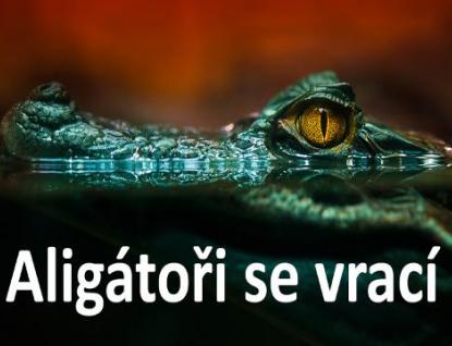 Zlínská zoo otevřela novou letní expozici pro aligátory