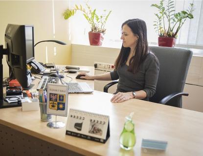 Kraj při on-line semináři informoval zájemce o novém dotačním programu vkultuře