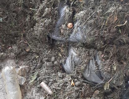 Množí se případy znečištění bioodpadu samotnými tříditeli