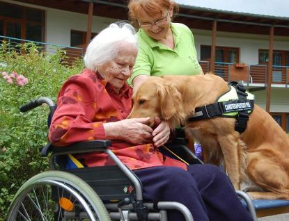 Klientům hospice Citadela a domova Konvikt pomáhají psi