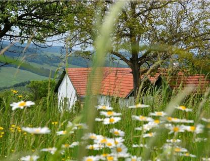 Zlínský kraj rozšiřuje svůj Program na podporu obnovy venkova