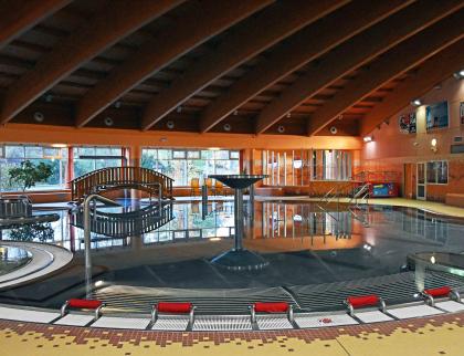 Krytý bazén se může pro veřejnost otevřít už vpondělí 1. června