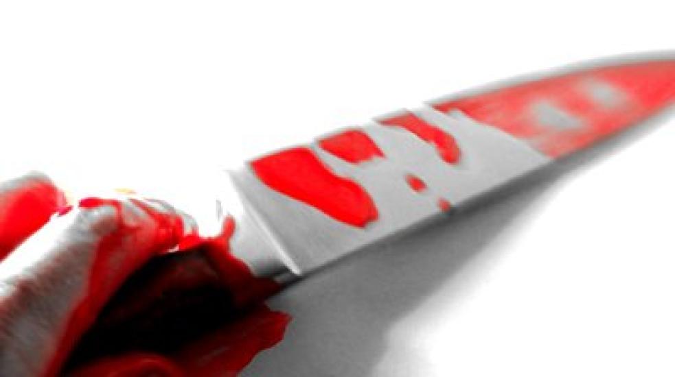 Děsivý víkend na chatě. Žena zabila v Senince nožem manžela