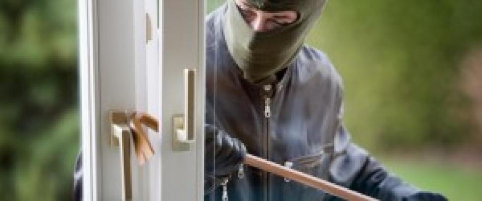 Rychlá práce: Zloděj byl dopaden během hodiny