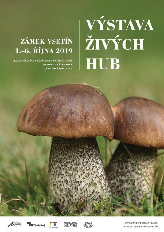 Vyrazte na houby do muzea