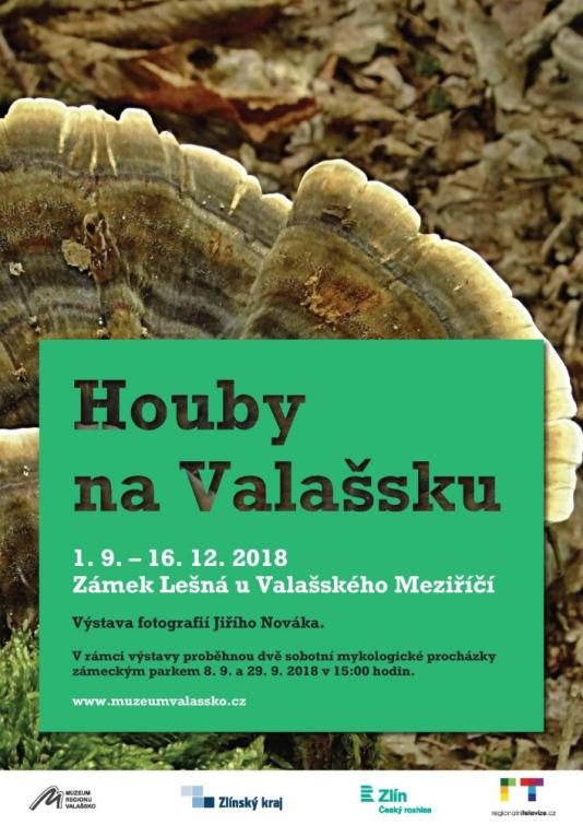 Výstava fotografií Houby na Valašsku