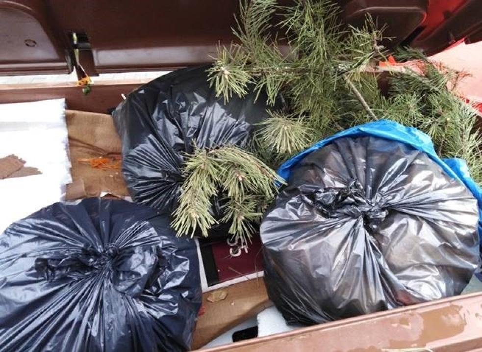 Špatně vytříděný odpad skončí bez užitku na skládce