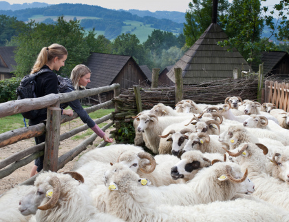 Valašská dědina představí podzimní práce na poli i v chalupě