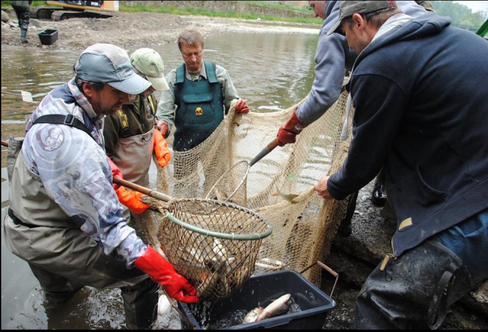 Řeka je bez ryb, oprava mostu může začít