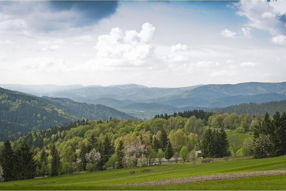 Zajištění péče o zvláště chráněná území podpoří kraj dotacemi