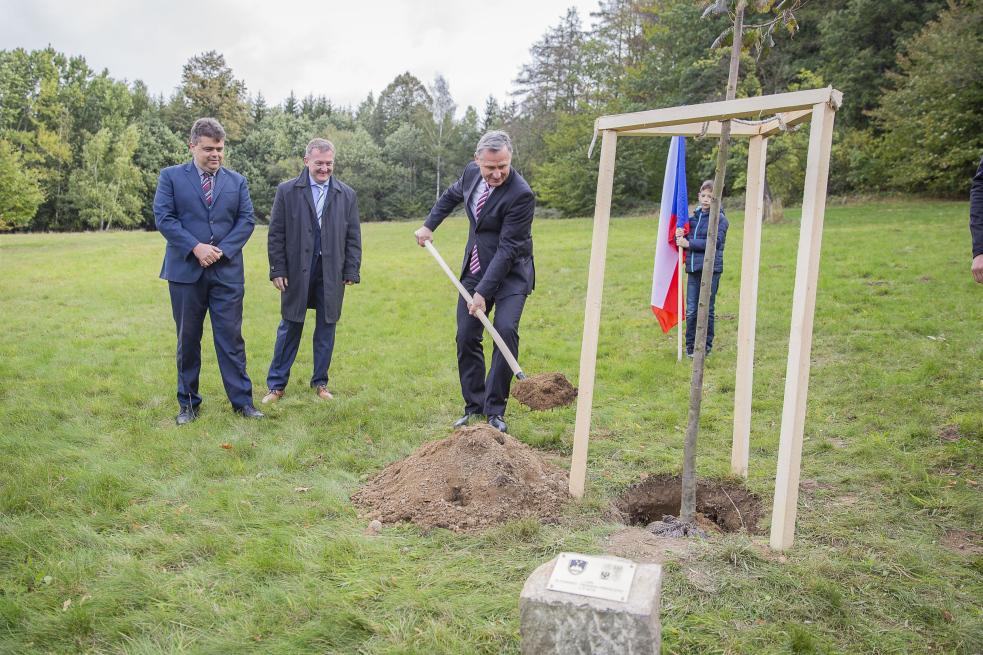 Občané Provodova zasadili lípu slovinsko-českého přátelství