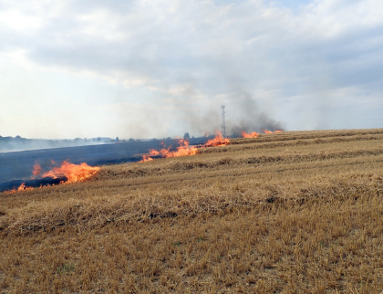 Požár pole zaměstnal sedm jednotek hasičů