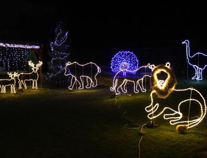 Zlaté ruce Josefa Krajči. Na zahradě si postavil světelné vánoční ZOO