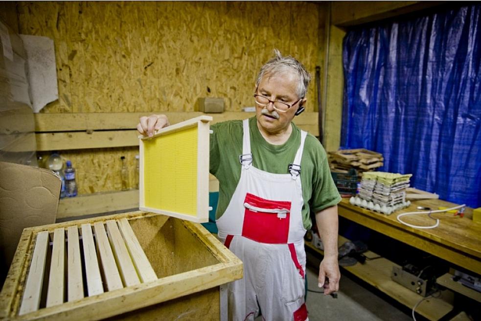 Včelaři mohou opět žádat kraj o finanční podporu