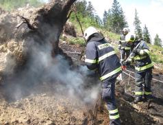 Hořící les ve Vidči hasilo pět jednotek hasičů