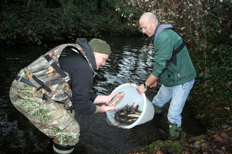 Rybáři začali do Bečvy vysazovat první ryby. Jde o ostroretky
