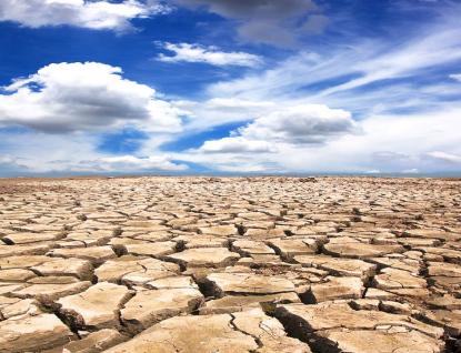 Zmírnění následků sucha vlesích podpoří kraj dotacemi ve výši přesahující 3 miliony korun