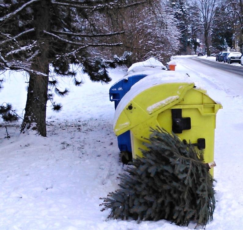 Tradiční otázka: Co s vánočním stromečkem?